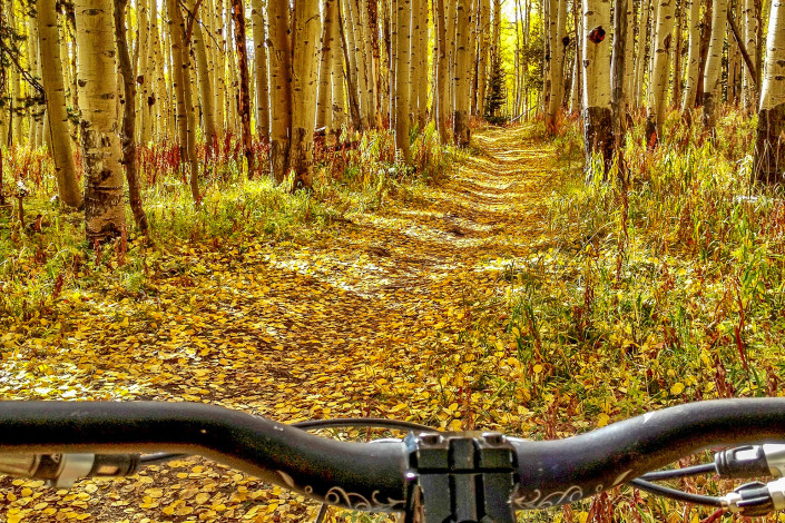 Fall Bike Ride in Crested Butte - Big Als Bicycle Heaven - Crested Butte Bike Rentals